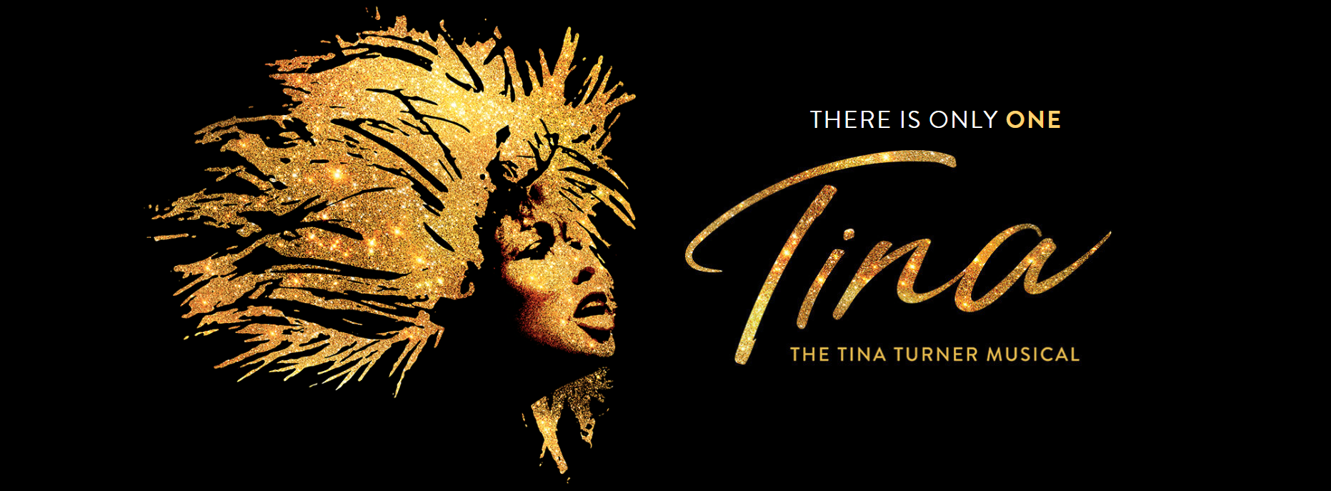 A sparkling gold drawing of Tina Turner with wild hair is shown, next to the logo for Tina, the Tina Turner musical, which is styled like an autograph.